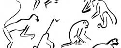 Animal Sketching – Alexander Calder