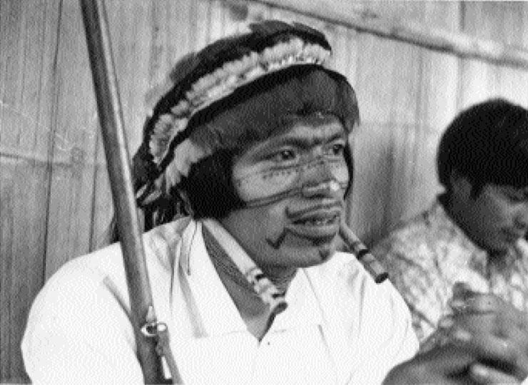 Les-masques-de-la-memoire-Anne-Christine-Taylor-indien-jivaro-peinture-corporelles-photo