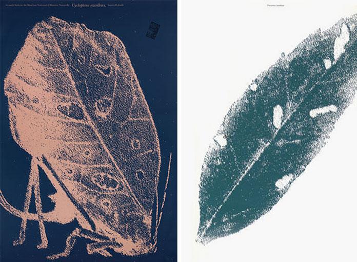 Ouverture-Grande-Galerie-de-l-evolution-Widmer-Ungerer-1994-05