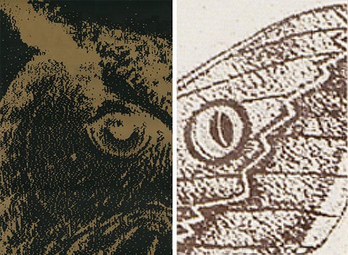 Ouverture-Grande-Galerie-de-l-evolution-Widmer-Ungerer-1994-06