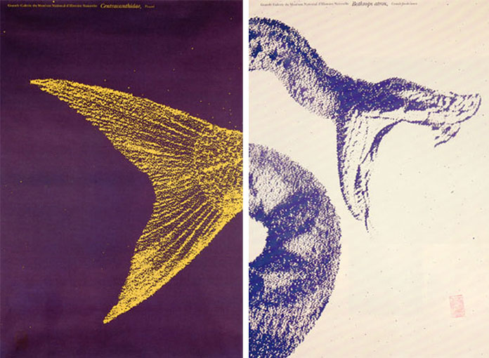 Ouverture-Grande-Galerie-de-l-evolution-Widmer-Ungerer-1994-07