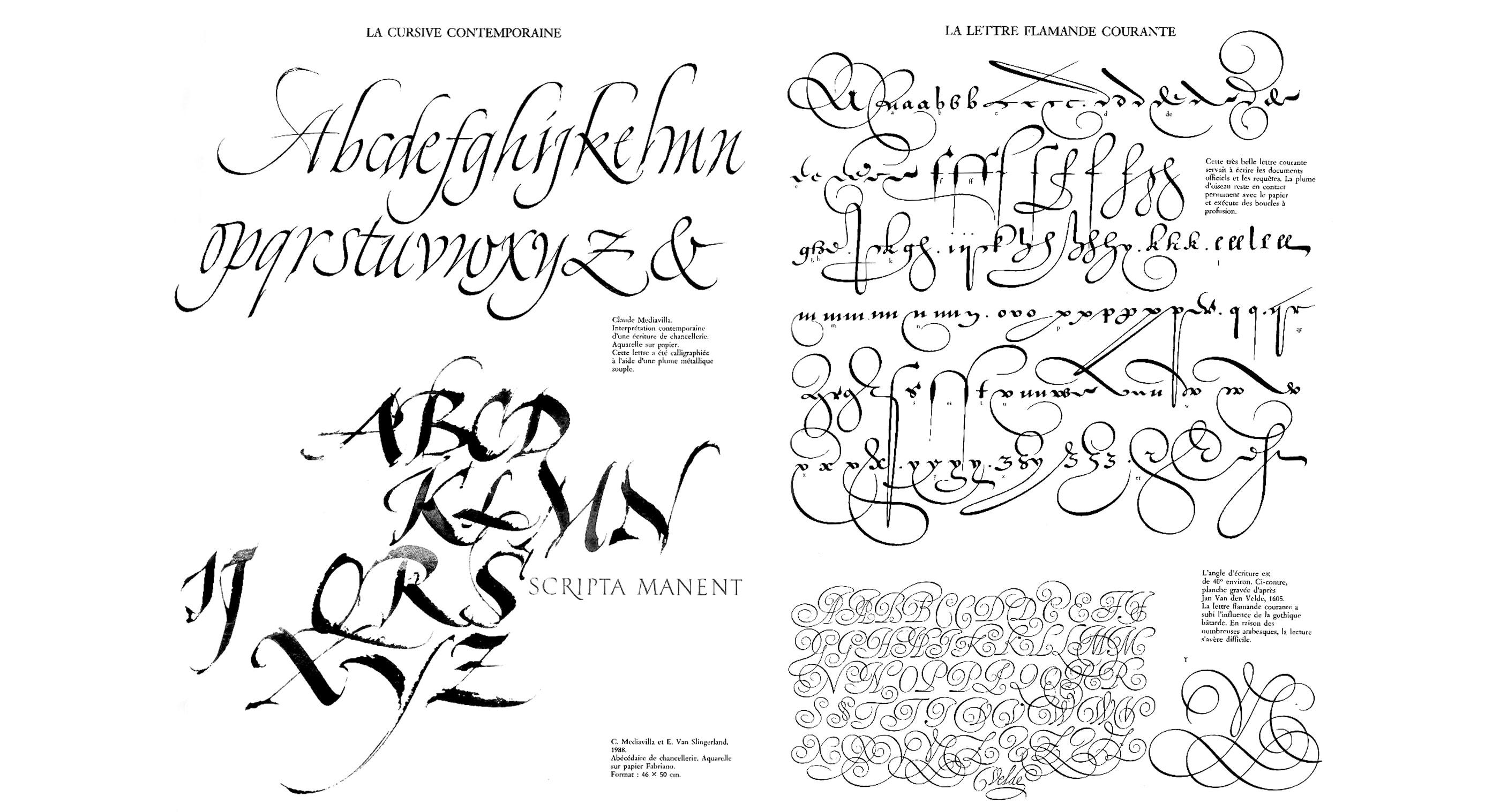 claude-mediavilla-calligraphie-cursive-contemporaine-flamande-courante-nb
