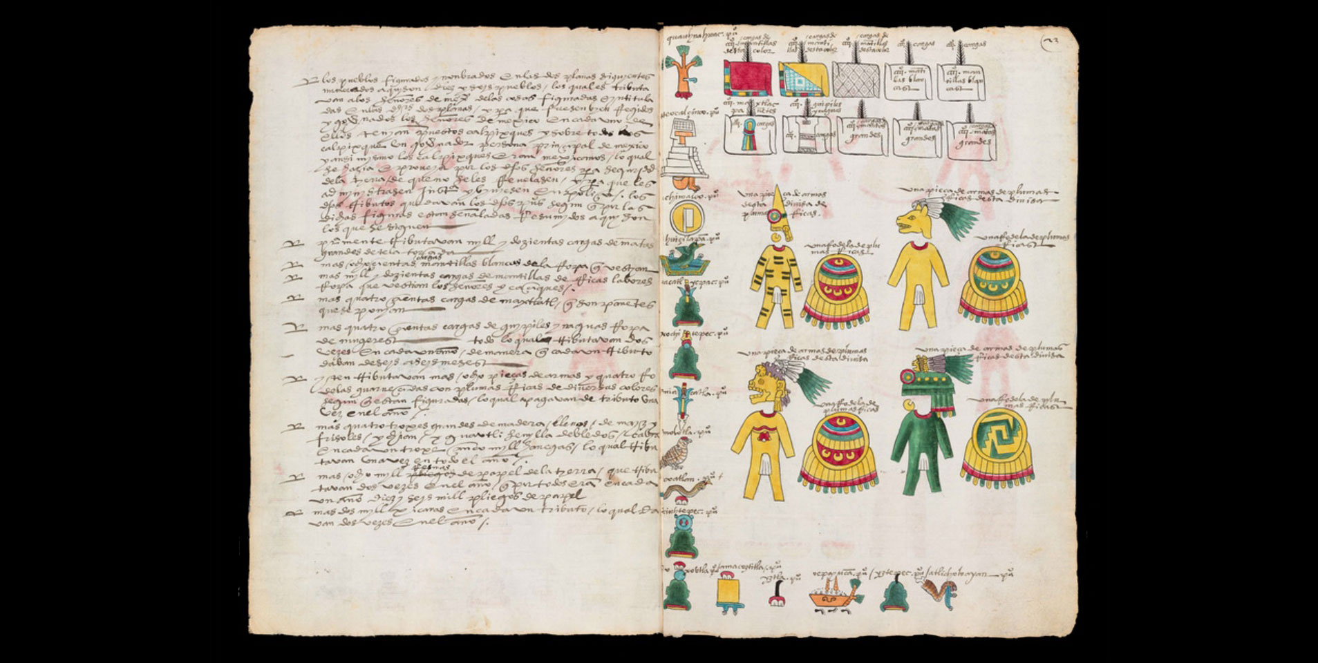 codex-mendoza-6