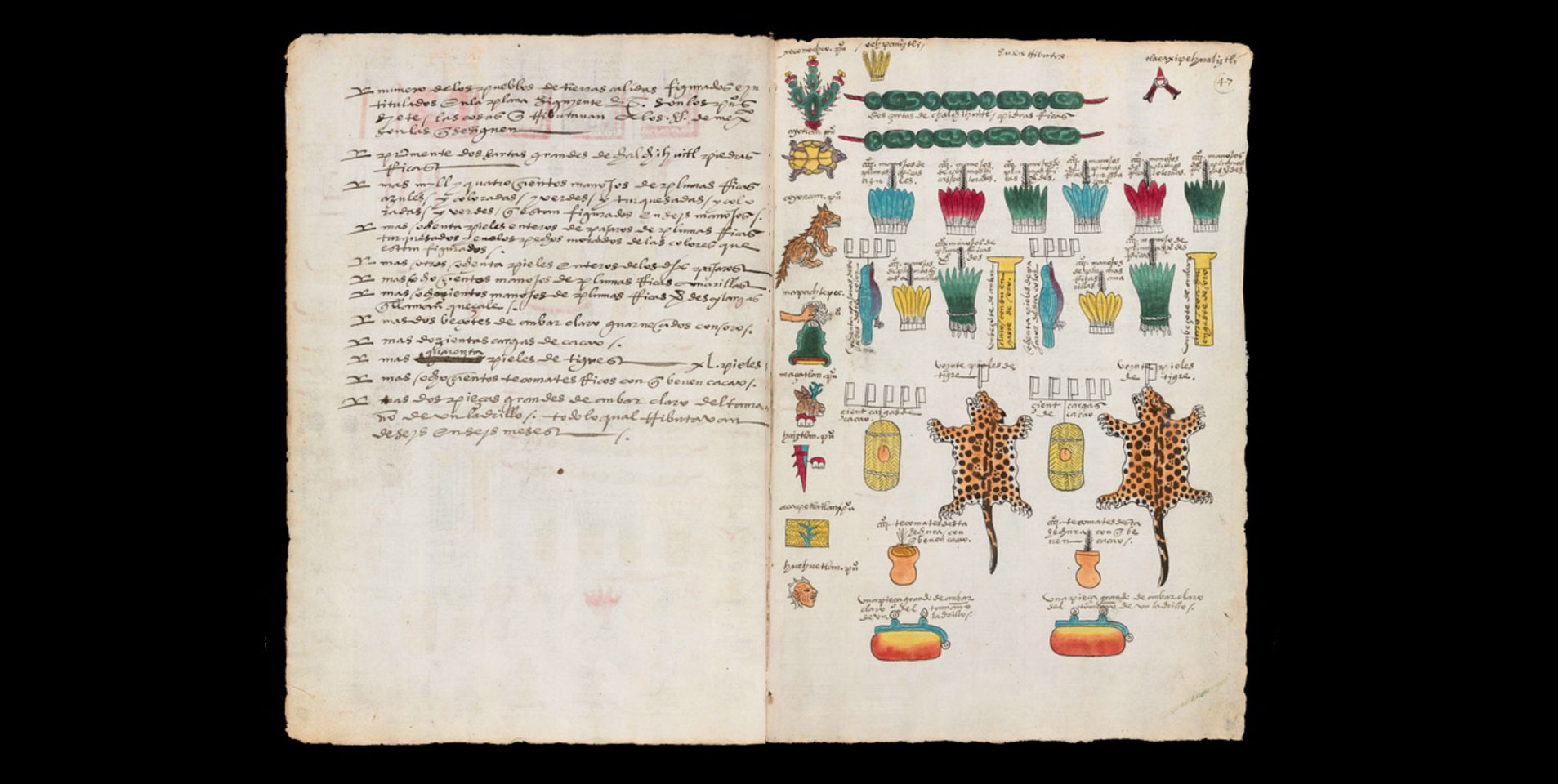 codex-mendoza-8