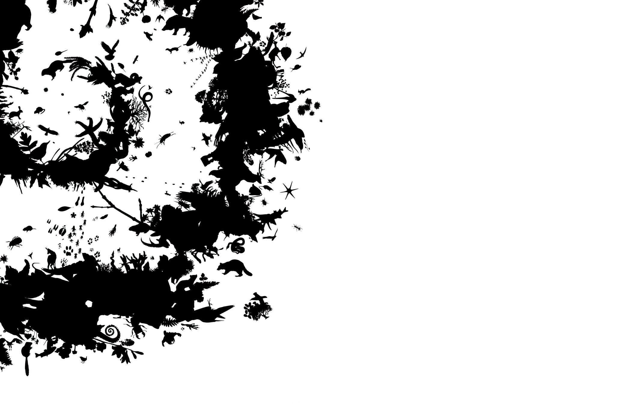 pierre-bernard-graphisme-atelier-de-creation-graphique-charte-graphique-pour-les-parcs-nationaux-de-france