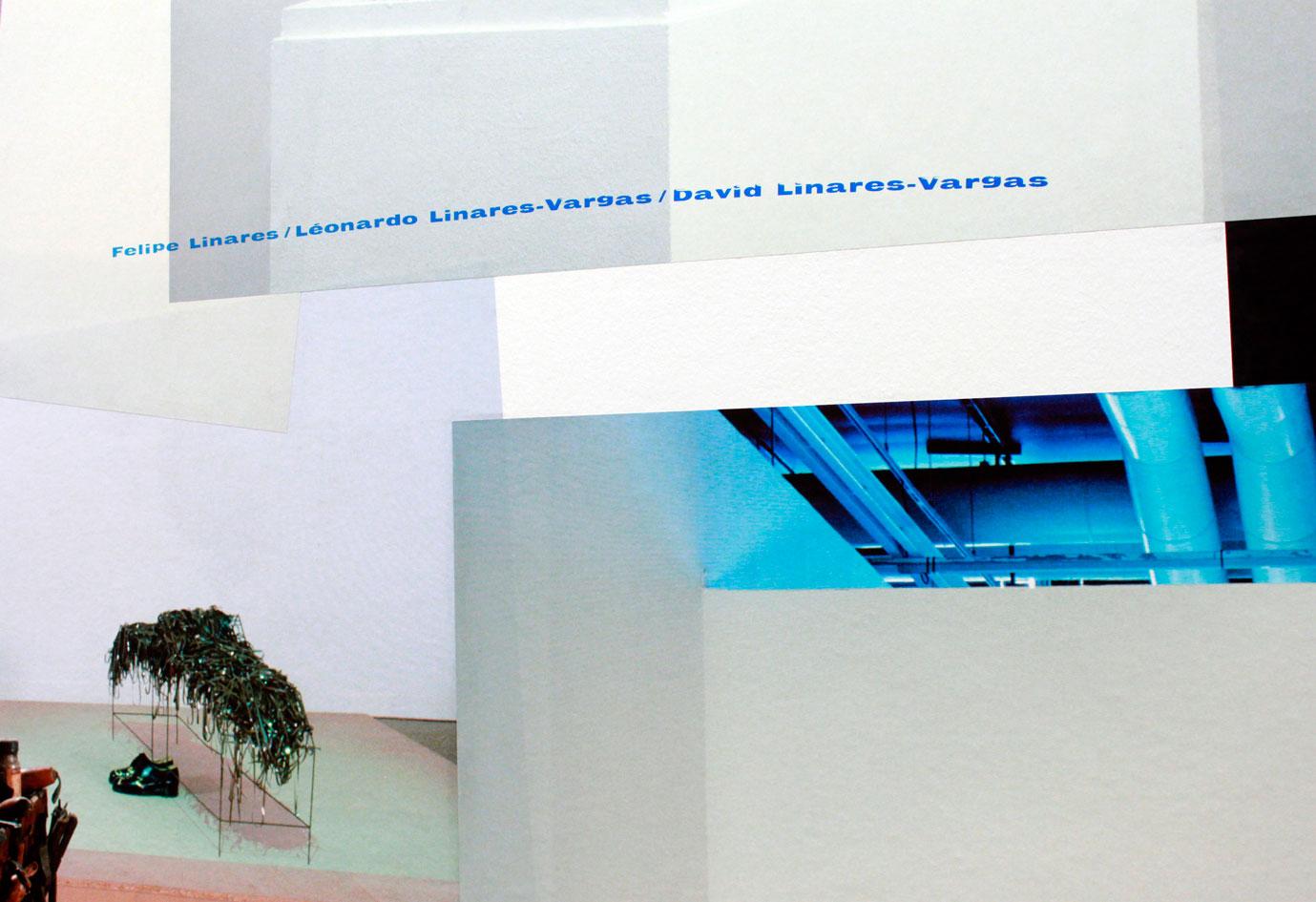 syndicat-graphisme-Sacha-Leopold-Francois-Havegeer-exposition-magicien-de-la-terre